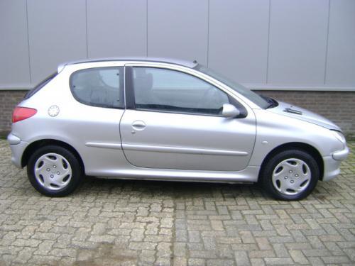 Convertizor Peugeot 206 2000